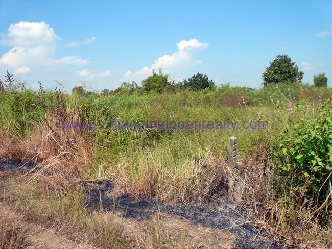 [L11] Land for Sale @ Lam Phun.
