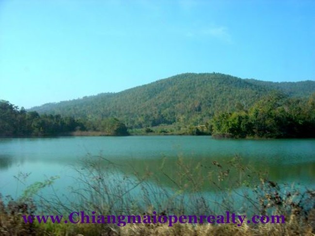 [L44] Land for Sale @Mae Tang.