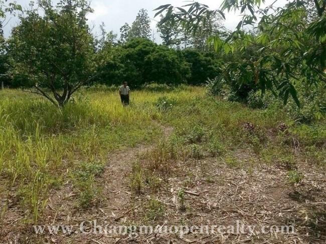 [L50] Land for sale @ Nam Prae, Hang Dong
