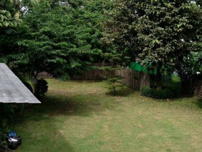 [H347] House for Rent @ Mae Rim -Unavailable-